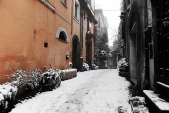 neve-2012-12